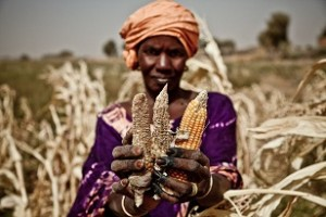West_Africa_drought_oxfam