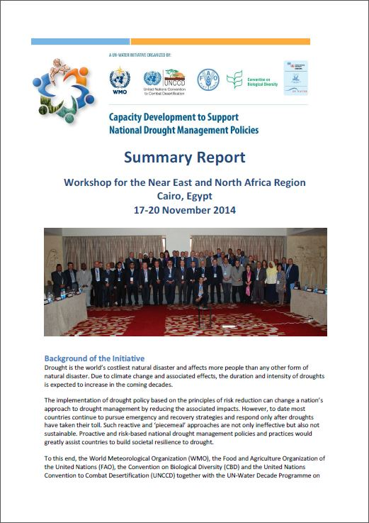 Summary report_Eastern Europe