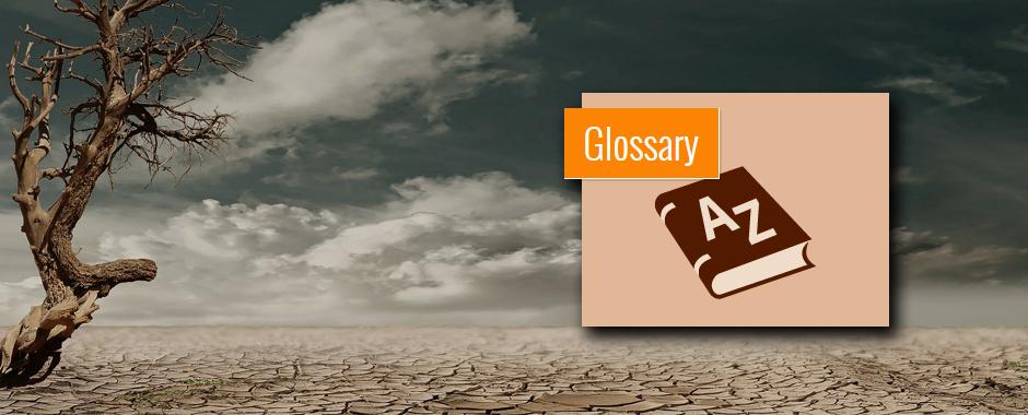 IDMP_Banner_Glossary